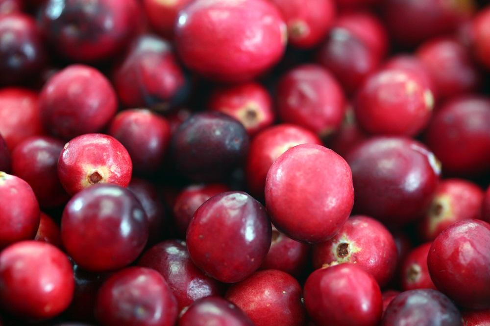 Cranberries20101210 (1)